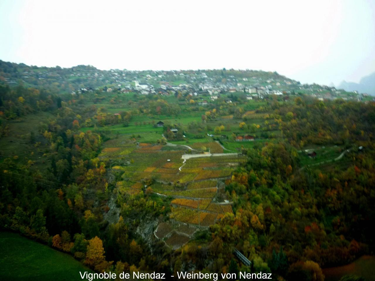 Vignoble de Nendaz