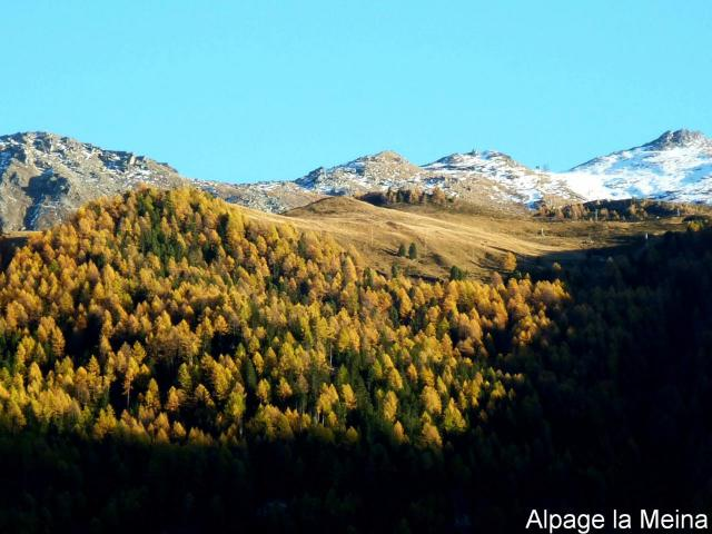 Alpe la Meina