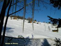 Weideflächen im Winter (Bleusy)