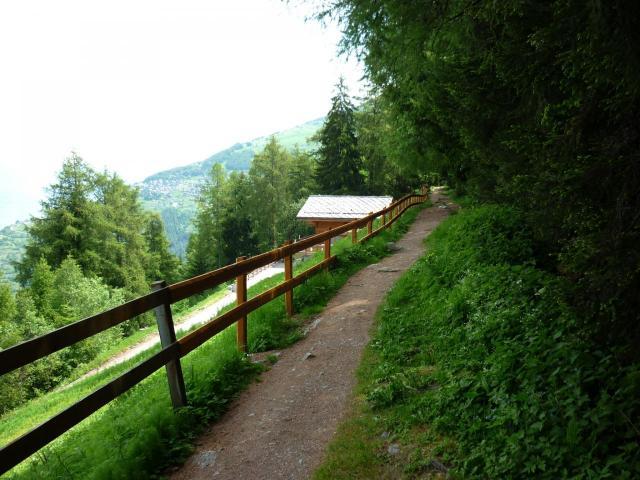 Chemin à Haute-Nendaz (Bisse du Milieu)