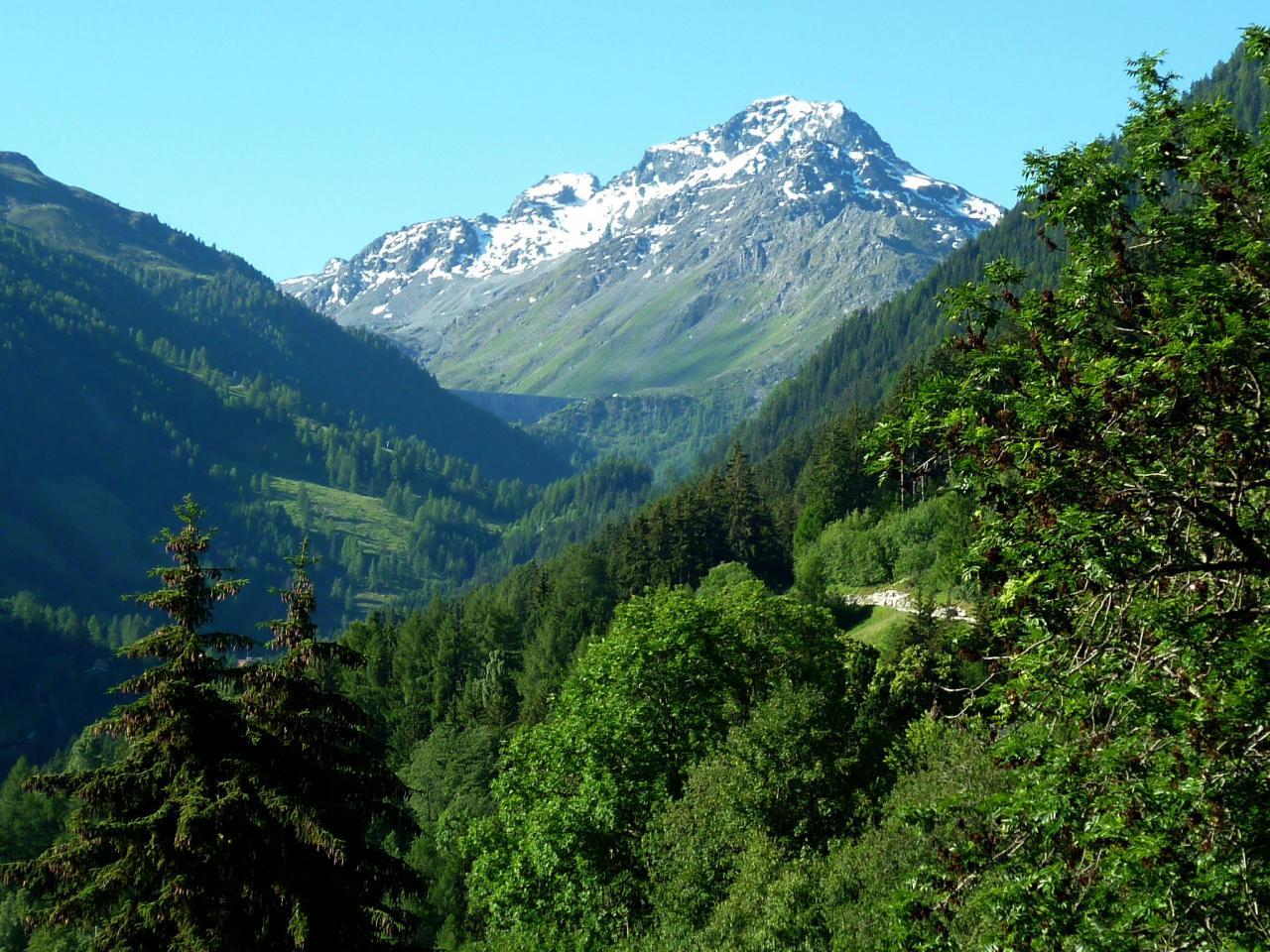 le Bec des Etagnes 3332 m vue du mayen.